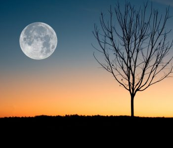 cadeau pierre de lune